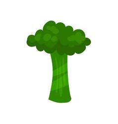 T veggie vegetable english alphabet letter made vector