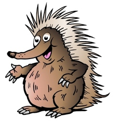 Hand-drawn of an Echidna vector image