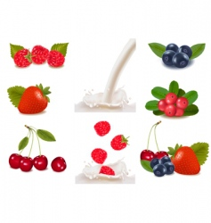 berries and milk vector image vector image