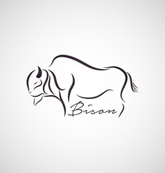 Bison logo vector image vector image