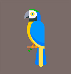 parrot bird blue breed species animal nature vector image vector image