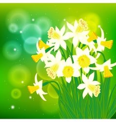 Card with white daffodils on light bokeh vector