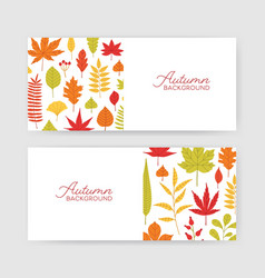 collection of autumn horizontal banner templates vector image