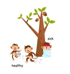 Opposite sick and healthy vector