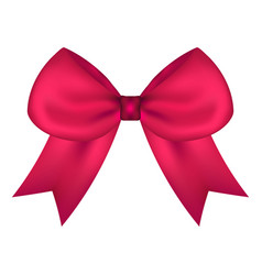 pink gift bow of ribbon isolated on white vector image