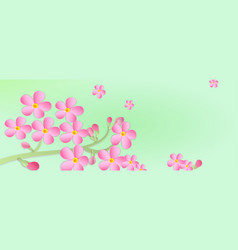 banner with a branch of cherry blossoms with vector image