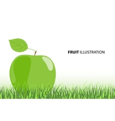 ripe apple vector image vector image