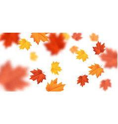 blurred falling leaves with wind isolated vector image