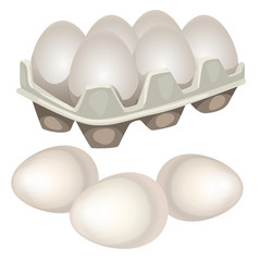 chicken eggs in a cardboard box isolated on white vector image