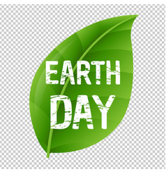 earth day leaf and transparent background vector image vector image