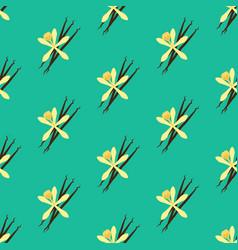 Vanilla flower seamless pattern vector
