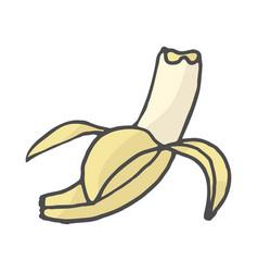 fruits banana color doodle vector image
