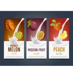 Fruits milkshake splash dessert cocktail drink vector image
