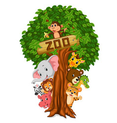 Funny animal hiding behind a tree vector