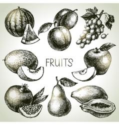 Hand drawn sketch fruit set Eco foods vector