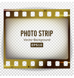 photo strip realistic empty frame strip vector image
