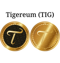 Set of physical golden coin tigereum tig vector
