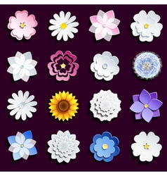 set spring and summer flowers vector image