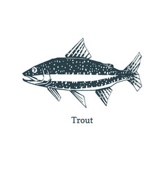 Trout in logo for packaging vector
