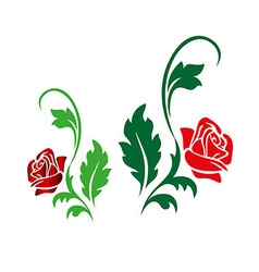 Two roses vector