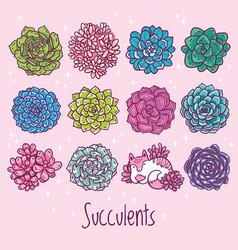 tropical succulent plants set with cat trendy vector image