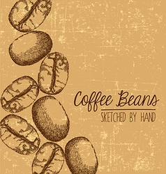 Hand drawn coffee bean design with space for text vector image