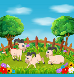 natural view with the goat action in the yard vector image