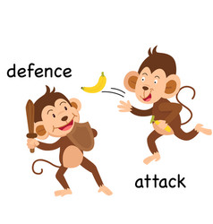 Opposite defence and attack vector