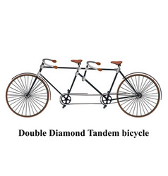 Vintage tandem bicycle isolated on white vector