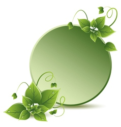 green leaves eco design vector image
