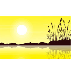 silhouette of coarse grass with yellow sky vector image