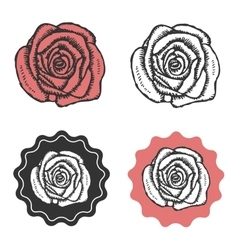 Vintage hand drawn rose logo emblem sign vector image vector image