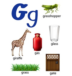 Things that start with the letter g vector