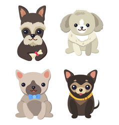 Dogs variety collection poster vector