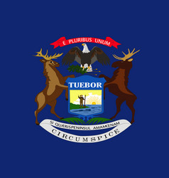 Flag of michigan usa vector