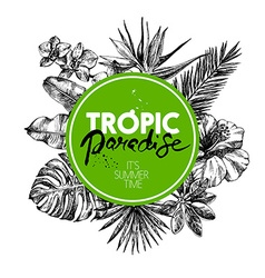 Hand drawn sketch tropical plants background vector