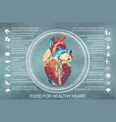 infographic food for healthy vector image