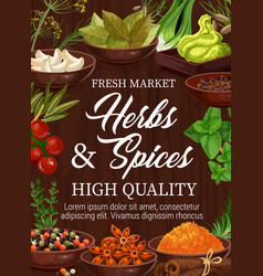 organic herbs and spices seasonings market vector image