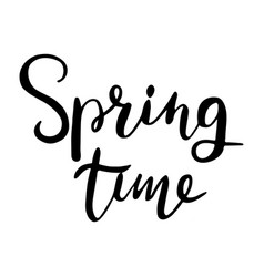 Spring time hand lettering typographic element vector