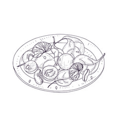 Tasty salad on plate hand drawn with contour lines vector