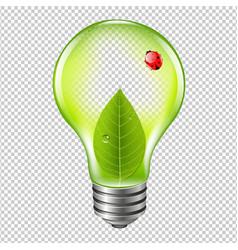 Eco bulb with ladybug vector