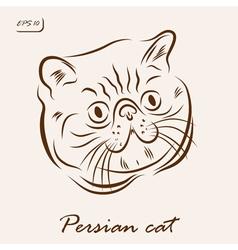 Persian cat vector