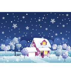 Winter night house vector image vector image