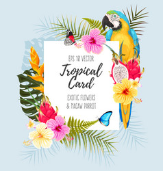 Card with macaw and flowers vector