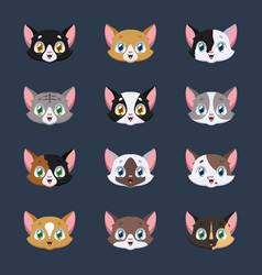 collection of various cat avatars vector image