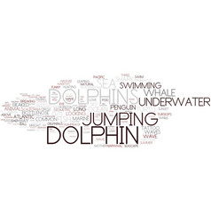 Dolphin word cloud concept vector