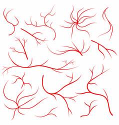 Eye veins human vessels blood arteries set vector