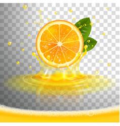 Juicy orange with juice splash and squeezed juice vector