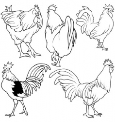 rooster set vector image