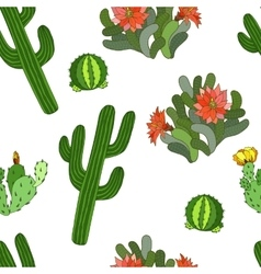 Seamless pattern with cactus and flowers vector